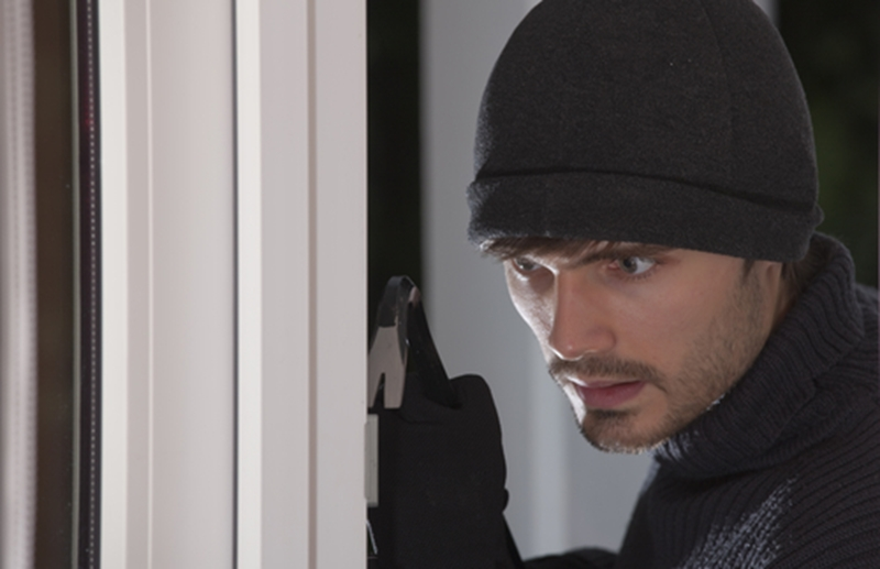 Burglars see architectural features as potential entry points to a building.