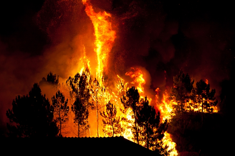 Architects have a large role to play in bush fire proofing Australian homes.